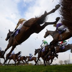 A day out at the Cheltenham Festival – My guide