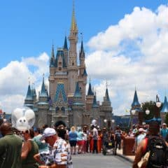Top Four Theme Parks you can Visit in Florida