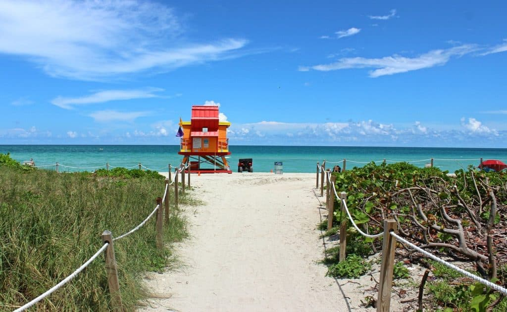 The best reasons to visit Miami